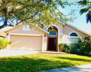 13351 Early Frost Circle, Orlando image