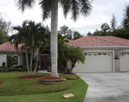 10332 Wood Ibis Ave, Bonita Springs image