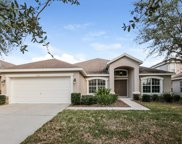 15511 Starling Water Drive, Lithia image