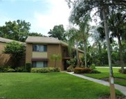 15121 Bagpipe WAY Unit 202, Fort Myers image