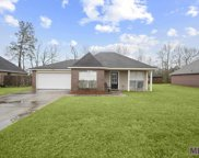 10016 Park Ridge Ave, Denham Springs image