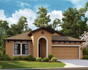 12828 Satin Lily Drive, Riverview image
