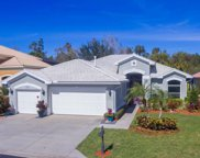 20520 Rookery Dr, Estero image