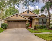 6119 Gannetwood Place, Lithia image