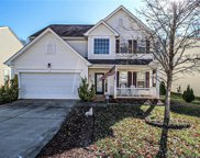 13011  Rothe House Road, Charlotte image