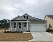 153 Champions Village Dr., Murrells Inlet image