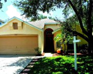 13463 Staghorn Road, Tampa image