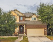 10611 Larch Grove Ct, Helotes image