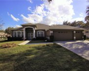 12525 River Birch Drive, Riverview image