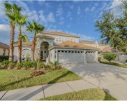8318 Old Town Drive, Tampa image