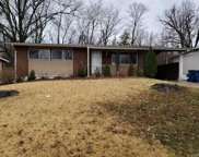 10227 Green Valley Dr, Dellwood image