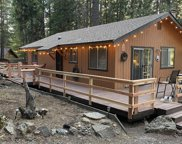5268  Forest, Grizzly Flats image