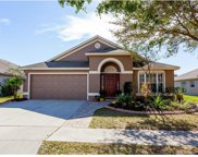 10309 Soaring Eagle Drive, Riverview image