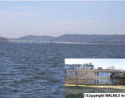 650 Browns Creek Road, Guntersville image