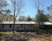 11768 Perkle Road, Lakeland image