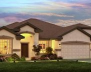 10412 Cardera Drive, Riverview image