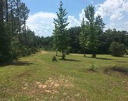 19350 County Road 87, Robertsdale image