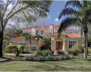 7401 Water Silk Drive N, Pinellas Park image