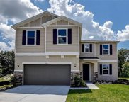 9116 Freedom Hill Drive, Seffner image