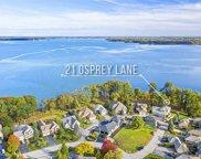 21 Osprey Lane, Newmarket image