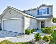 1104 Stoney Falls Blvd., Myrtle Beach image