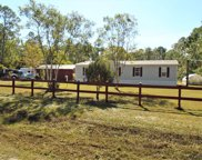 5795 Nutwood Ave, Bunnell image