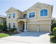 531 Harbor Grove Circle, Safety Harbor image