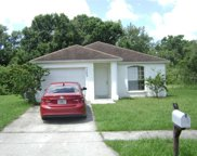 5203 Roble Grove Court, Tampa image