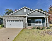 1584  Spring Blossom Trail, Fort Mill image