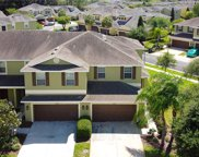 20218 Indian Rosewood Drive, Tampa image