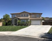 32344 Pink Carnation Ct, Winchester image