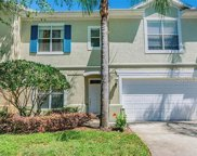 3427 Heards Ferry Drive, Tampa image