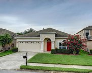 10504 Peppergrass Court, Trinity image
