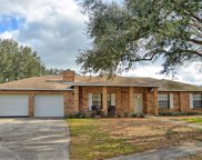 3283 Lake George Cove Drive, Orlando image