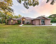 11119 Serenity Oaks Lane, Thonotosassa image