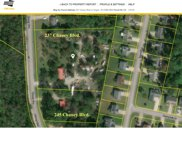 237 N Chaney Blvd, Lavergne image