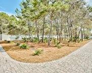 00 Walton Rose Lane, Inlet Beach image