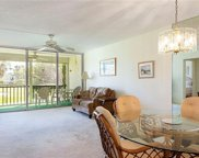 1085 Forest Lakes Dr Unit 8207, Naples image