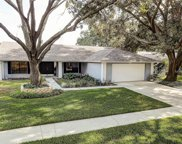3405 Valley Ranch Drive, Lutz image