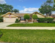 1201 Orchid Drive, Safety Harbor image