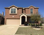 2253 Frosted Willow, Fort Worth image