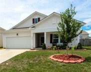 6929  Barefoot Forest Drive, Charlotte image