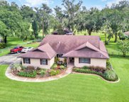 6505 Cathedral Oaks Dr, Plant City image