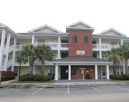 1000 Ray Costin Way Unit 107, Murrells Inlet image