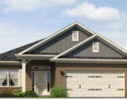 508 Flying Squirrel Way Unit Lot 166, Greenville image