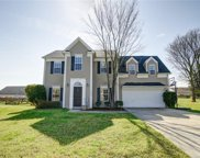 10418 Cobbler Patch  Court, Charlotte image