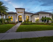 3528 Imperata, Rockledge image