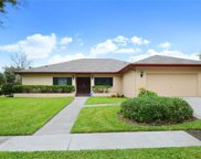 14602 Dartmoor Lane, Tampa image