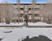 11620 Elbow Drive Sw Unit 211, Calgary image