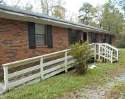 8461 Piney Woods Road, Willard image